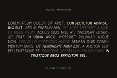 Rolves - Sans Serif Font Family Product Image 4