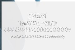 Ahsan Calligraphy Script Font Product Image 3