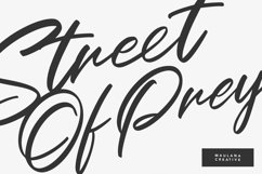 Outeris Calligraphy Font Product Image 2