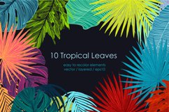 Tropical vector patterns Product Image 6