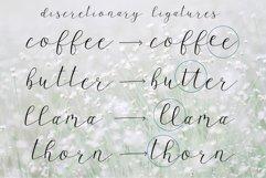 Wagonwheel Delicate Handwritten Script Font Product Image 6