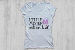 Little Mister Cotton Tail Svg, Easter Svg, Easter Bunny Svg. Product Image 2