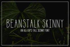 Beanstalk Skinny Font Product Image 1