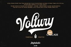 Voltury 4 fonts with extras Product Image 2
