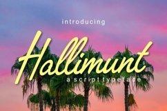 Hallimunt Product Image 1