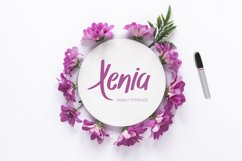Xenia Family Typeface Product Image 1