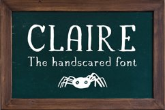 Claire - Serif font & illustrations Product Image 2