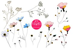 Wild Flowers Elements and Patterns Product Image 1