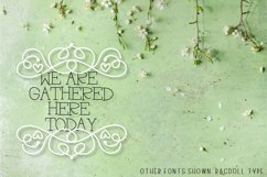 Ornament Font - The Perfect Accessory to Your Designs!  Product Image 6