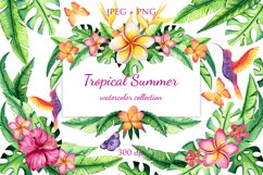 Tropical Summer Product Image 1