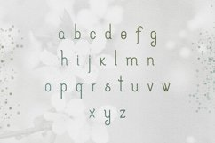 [Spring Vibes] Splendor Font Product Image 5