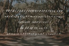 Oh, Savannah! Script Product Image 3