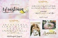 Best Seller Calligraphy Font Bundle Product Image 12