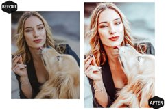 10 Pet And I Photoshop Actions And ACR Presets, Animal Ps Product Image 2
