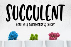 Succulent - a hand-lettered font! Product Image 10