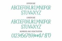 Web Font Camellia - a handwritten serif font Product Image 3