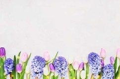 Spring flowers border on light background. Product Image 1
