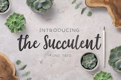 The succulent - font trio! Product Image 1