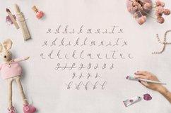 Web Font Allison Script Product Image 4