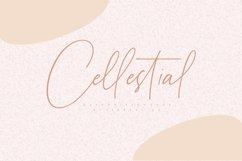 Elegant Handwritten Font Bundle Product Image 12