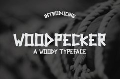 Woodpecker Typeface Product Image 1