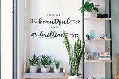 Beautiful New Sellita Script font Product Image 2