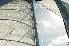 Souses — Light & Light Italic Product Image 5