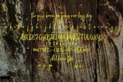 Kodute   Modern Script Font Product Image 4