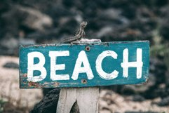 Sublime Beach Brush Font Product Image 4