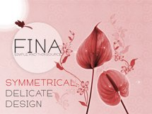 Fina Font Product Image 4