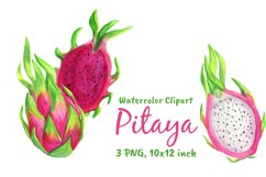 Dragon Fruit Watercolor Clipart Png Product Image 4