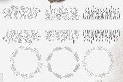 Line art botanical illustrations Product Image 3