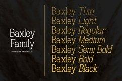 Baxley Slab Serif Product Image 5