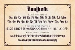 Banthern Product Image 6