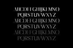 Cartland Serif Typeface Product Image 2