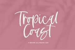 Tropical Coast - A Handwritten Script Font Product Image 1