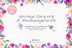 Spring Flowers and Hummingbirds Wanercolor Set Product Image 2