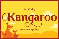 Web Font Kangaroo Product Image 1