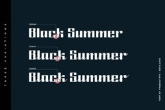 Black Summer Font Family Product Image 2