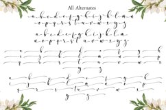 Almond Whisp - Modern Calligraphy Product Image 5