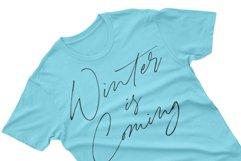 Winterlady Beautiful Script Font Product Image 4