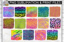 Colorful Animal Print Bundle 42 Sublimation Background PNG Product Image 4