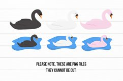 Cute Swans PNG Clipart Set - Swan Clipart Product Image 3