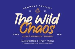 Web Font   The Wild Chaos   Family Product Image 1