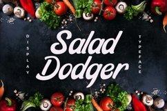 Web Font Salad Dodger Product Image 1