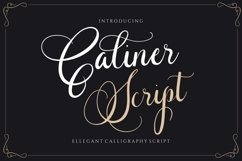 Caliner Script - Wedding Calligraphy Product Image 1