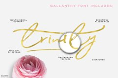 Gallantry Dry Marker Font Product Image 5