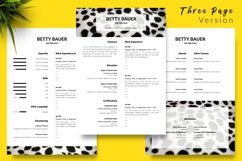 Animal Care Resume CV Template for Word & Pages Betty Bauer Product Image 4
