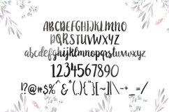 Anemone Script Product Image 2