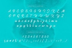 Brulee monoline font Product Image 4